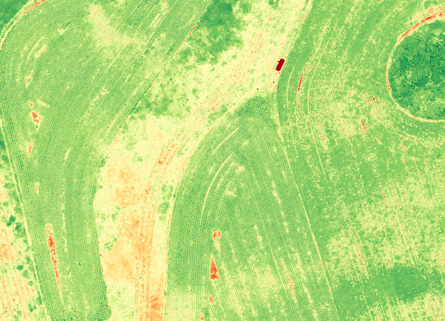 DroneDeploy NDVI